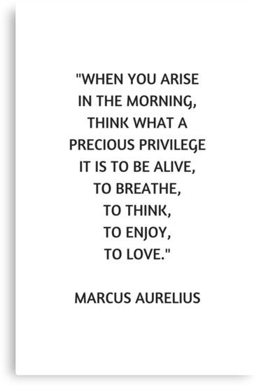 Stoic Philosophy Quote Marcus Aurelius What A Precious Privilege It Is To Be Alive Canvas Print By Ideasforartists Stoic Quotes Stoicism Quotes Alive Quotes