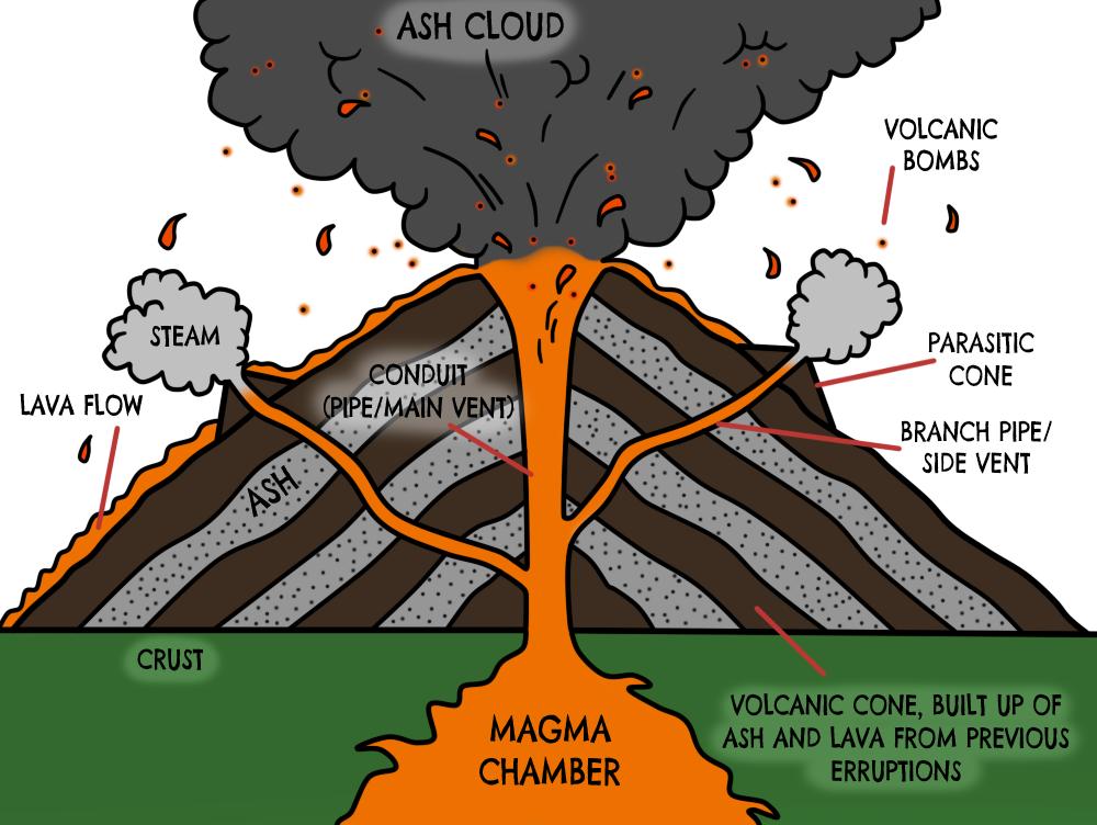 volcano diagram - Google Search | Shield volcano, Volcano ...