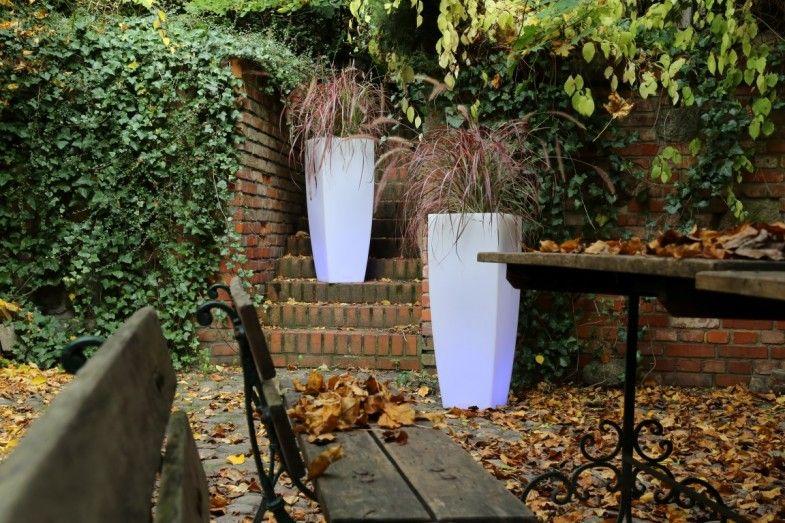 Der Herbst ist die beste Zeit, um ein trendiges Gartenarrangement zu schaffen. Niedrige Temperaturen begünstigen die Pflanzen und Behälter nicht – es reicht jedoch, sich für die richtigen, gegen Temperaturschwankungen widerstandsfähigen Blument ...
