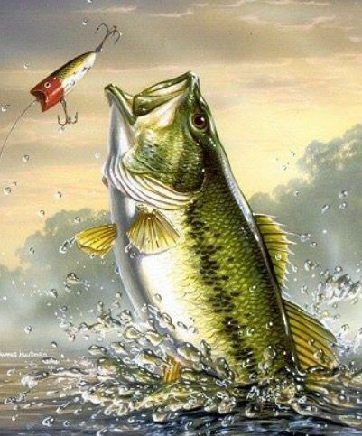 Largemouth bass fishing painting bass fishing for Bass fish painting