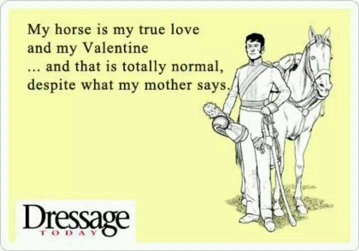 I just bought myself a horse! So happy valentines day to me!