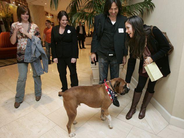 Pet Friendly Hotels In Nashville