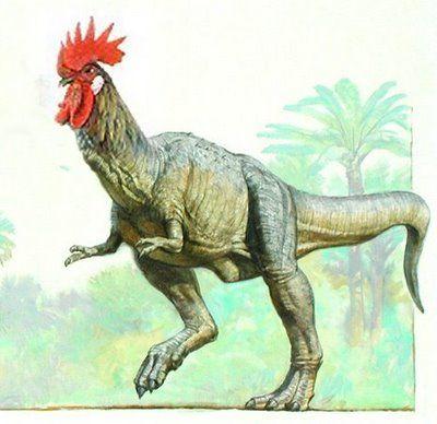 ニワトリ 恐竜 - Google 検索
