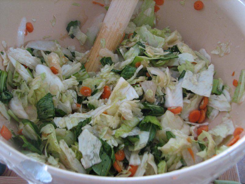 Fermenting Vegetables Sauerkraut with Sandor Katz (With