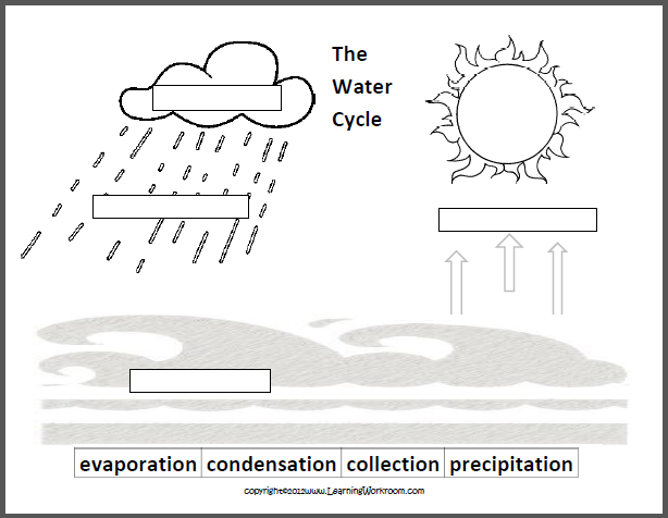Water Cycle Worksheet - water cycle worksheet for 3rd grade ...