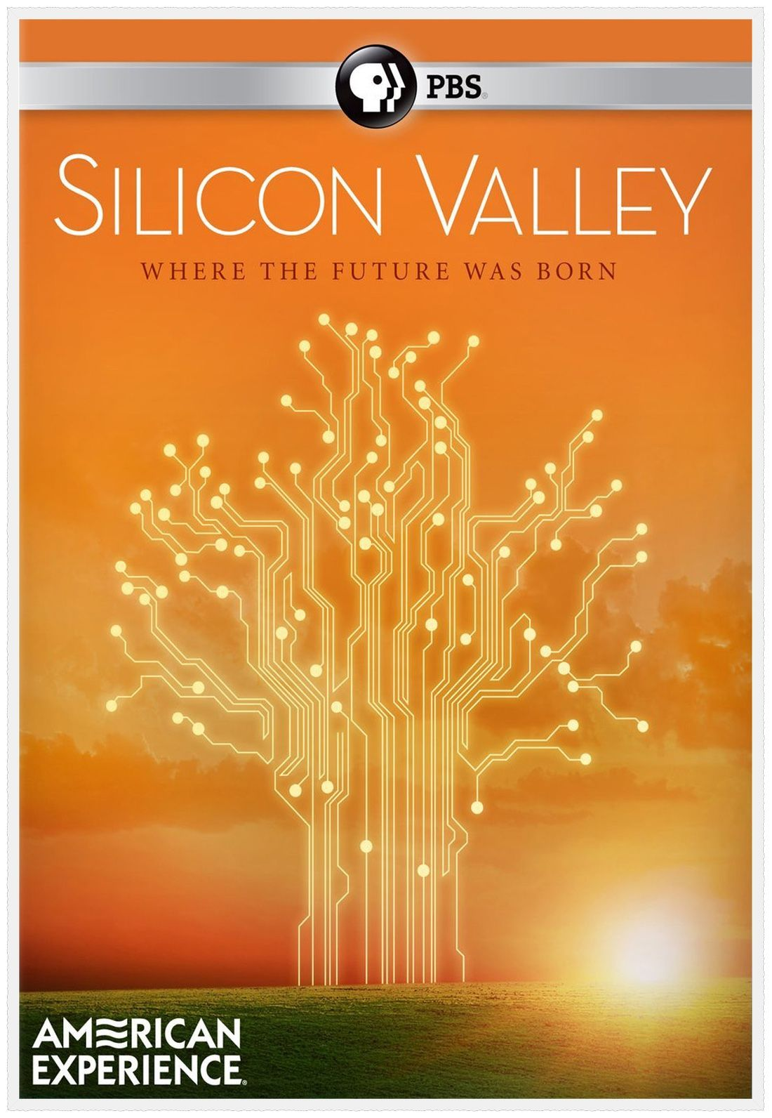 Silicon Valley is a nickname for the southern portion of