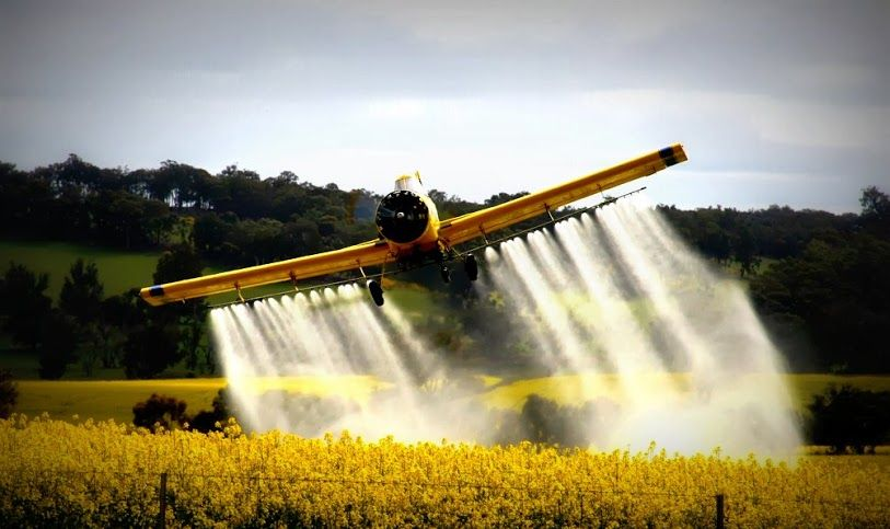Crop Duster. Takes me back to the fun part of being a kid