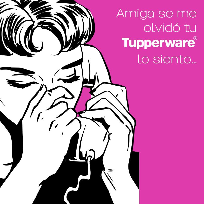 Memetupperware Tupperware Memes Poster