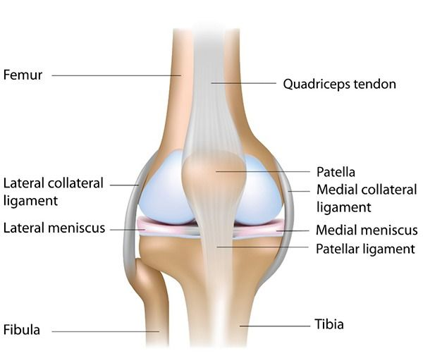 Practice These 5 Yoga Poses to Avoid Knee Pain and Prevent Injury ...