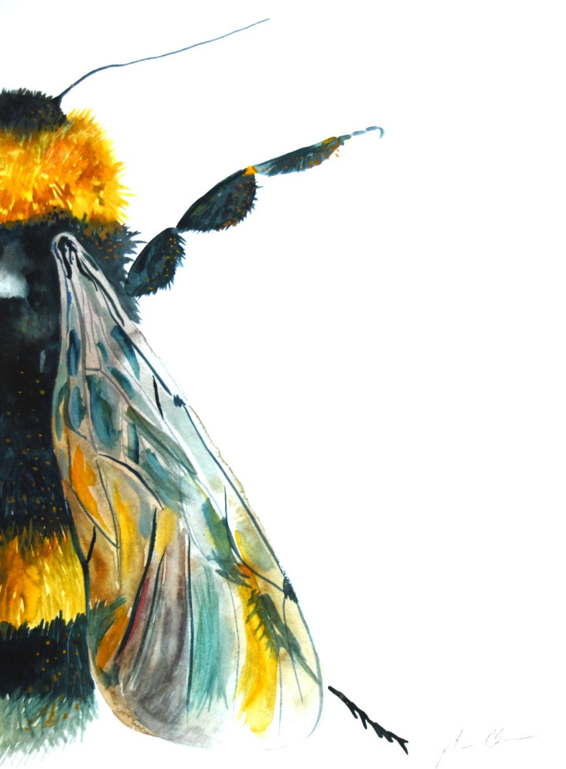 Watercolor Painting Original Art Bumble Bee Large By WoodPigeon