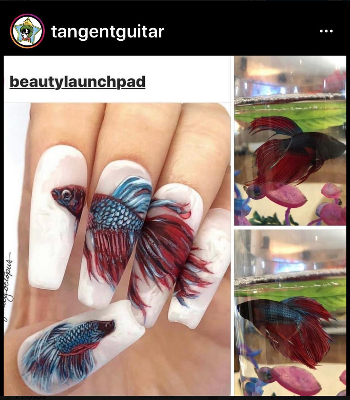 #lashsavers #nailitmag #nailpro #fishnails #BeautyLaunchpad #LaunchpadMcQ