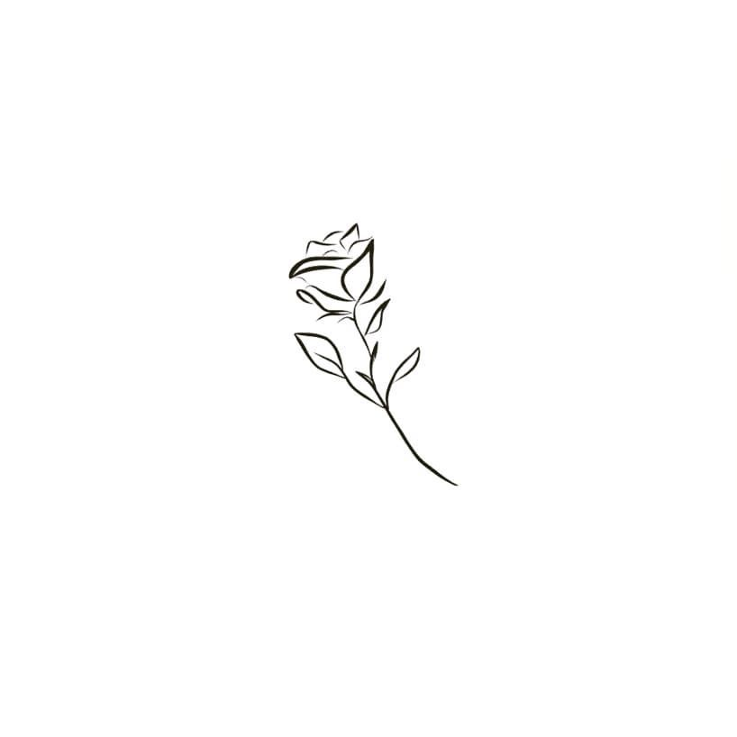 ~ Single rose ~  #roselover #englishrose #rosetattoo #drawing #womenwhodraw - Modern