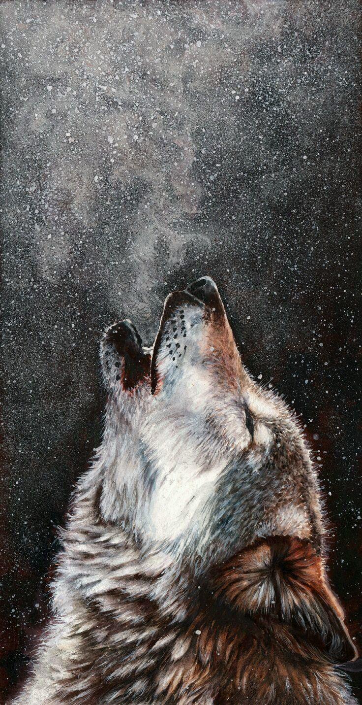 اتمنى لك السعادة بالقدر الذي احسه منك من الالم Wolf Painting Animal Art Wolf Wallpaper