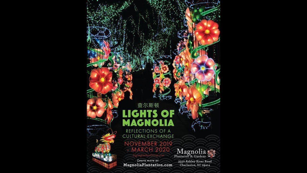 3613fedd543cc8df6e563f6db2e44db9 - Magnolia Plantation & Gardens 3550 Ashley River Road Charleston Sc