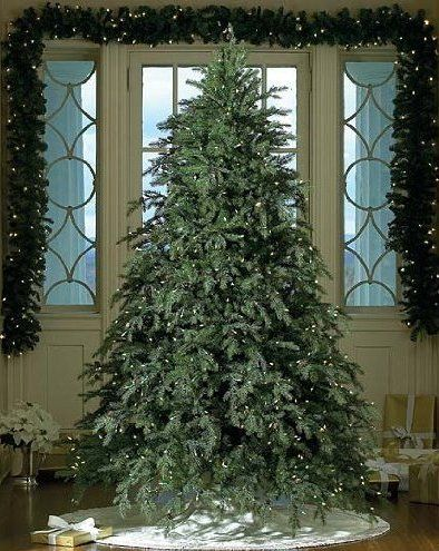 the gkibethlehem lighting collection downswept hunter fir pre lit artificial christmas tree clear lights artificial christmas trees - Best Place To Buy Artificial Christmas Trees