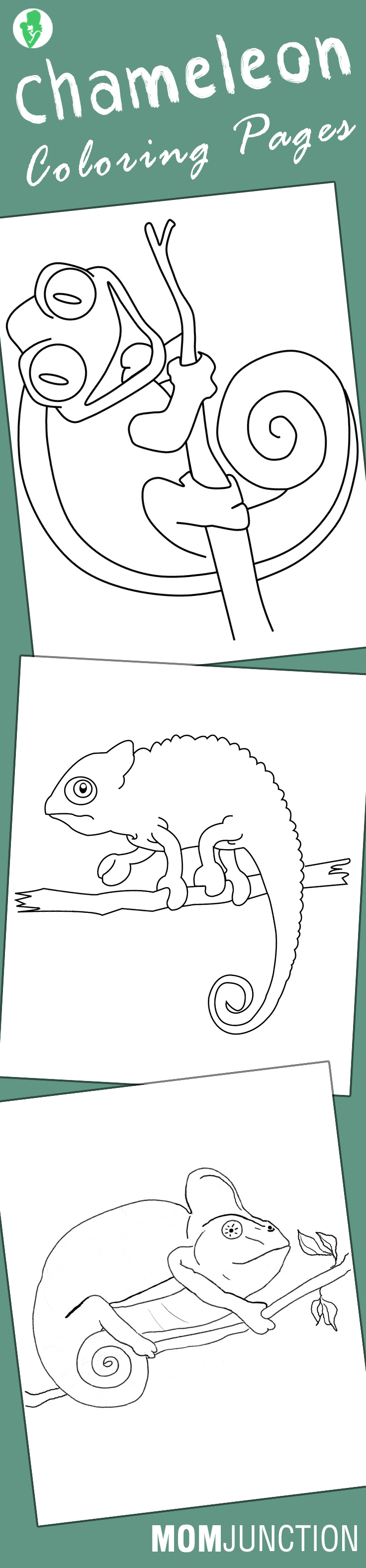 Chameleon Coloring Pages - Free Printables | Laser, Terapia y Colorear