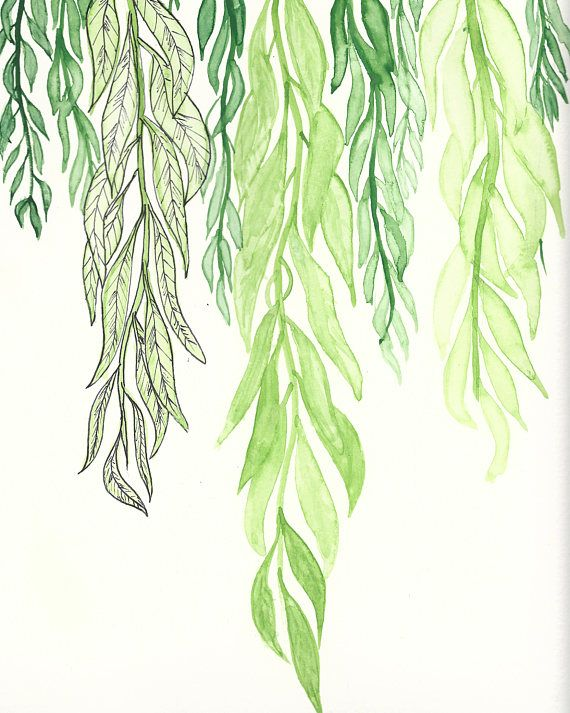 Willow Leaves Digital Print Watercolor Painted Leaves Blossom