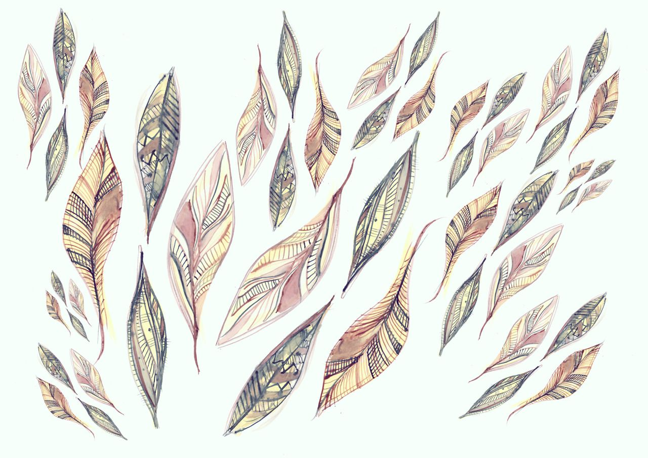 Feathers and Arrows | Feathers