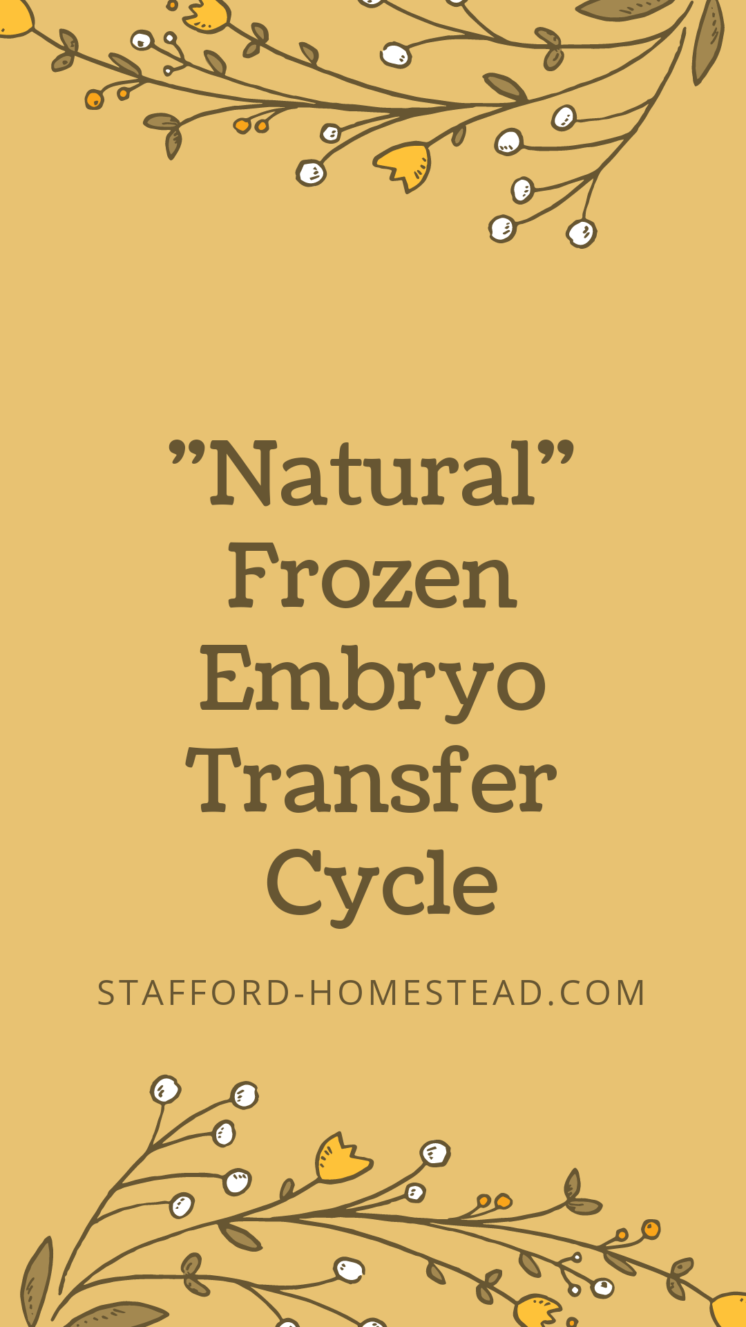 """My """"Natural"""" Cycle for Frozen Embryo Transfer  