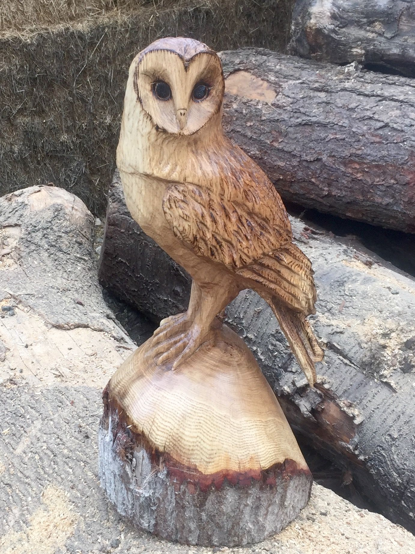 Chainsaw carved oak owl mine wood carving art wood art