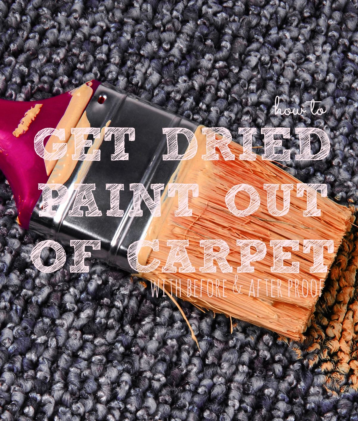How To Get Rid Of Old Carpet Stains Pet Stains Carpet Carpet Stains