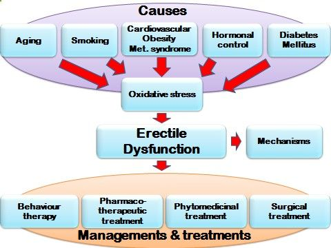 Flow chart centered on the process of erectile dysfunction