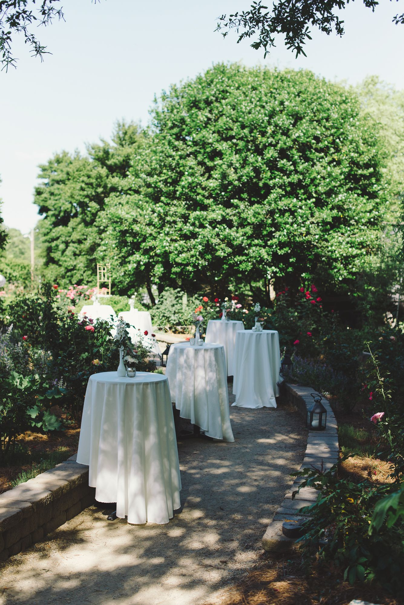 Chancey Charm Is Thrilled To Add The Mcgill Rose Garden