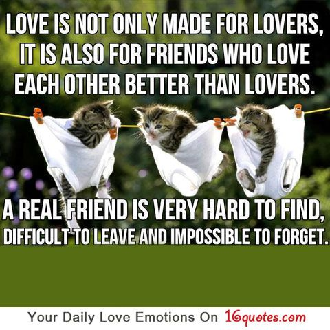 Love Is Not Only Made For Lovers It Is Also For Friends Who Love