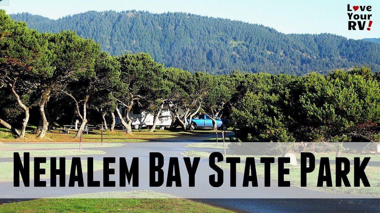 Nehalem Bay State Park On The Oregon Coast State Parks Nehalem Bay Oregon Coast