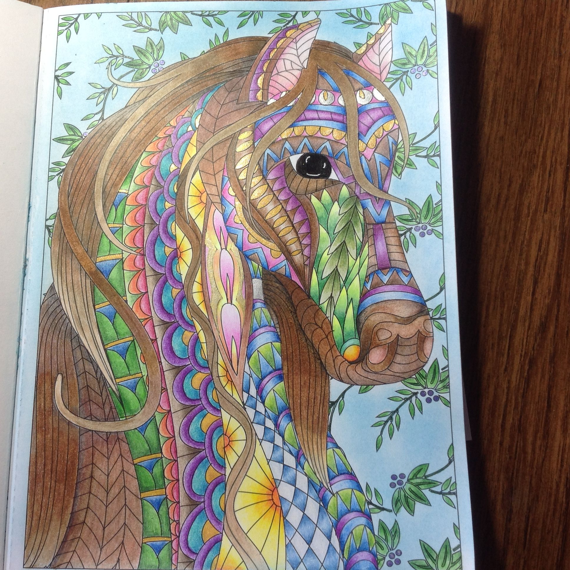 Creatures Of Beauty Coloring Book