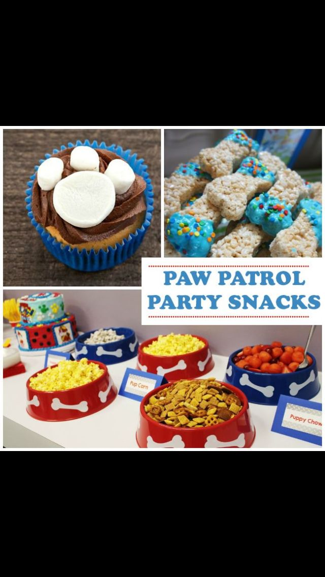 Birthday Fun Ideas For Boys Puppy Parties Third 2
