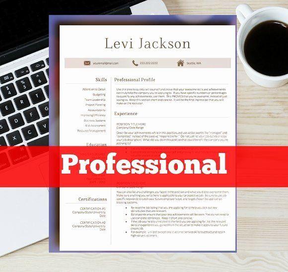 Resume Template Microsoft Word Mac Best Of 1 Page ...