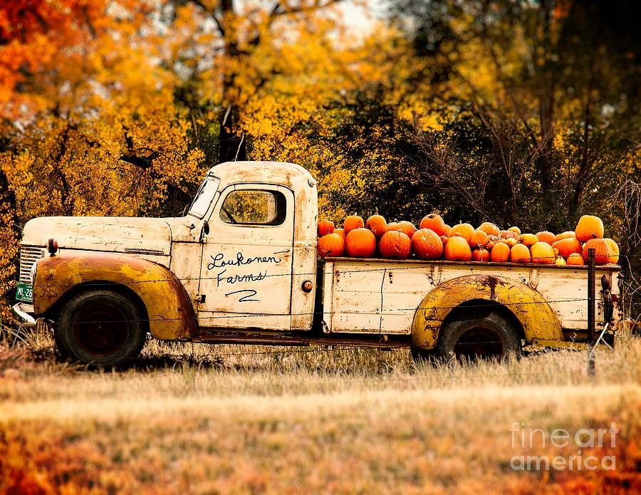 Autumn Countryside Old Trucks And Pumpkins