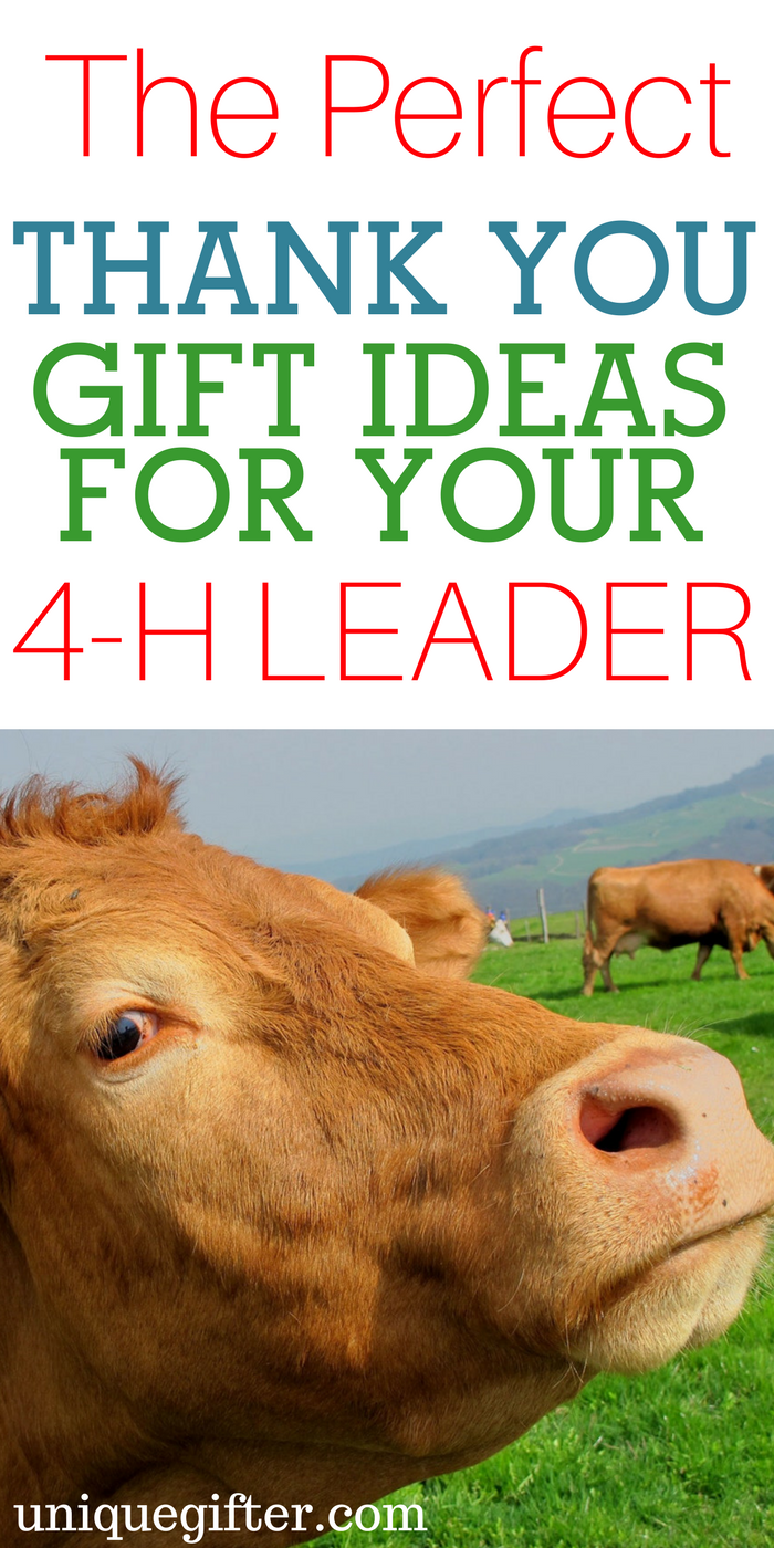 20 gift ideas for a 4-h leader | gifts | pinterest | gifts, teacher