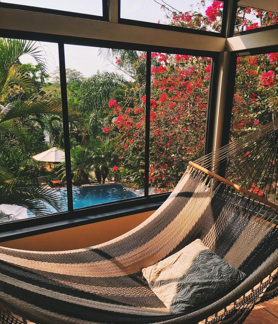 """""""I've Never Had A Hammock Inside My Suite Before But You"""