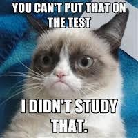 Blog Not Found Funny Grumpy Cat Memes Grumpy Cat Humor Grumpy Cat Quotes