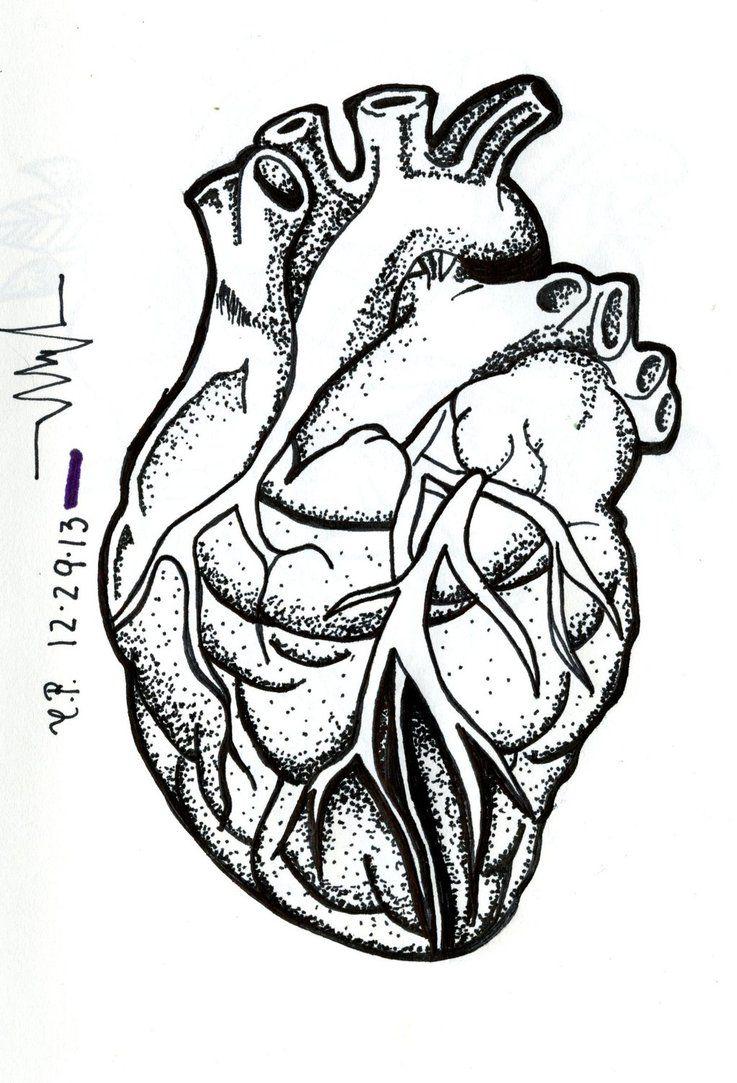 Desenho Tatuagem Corao Humano Realista Tattoo