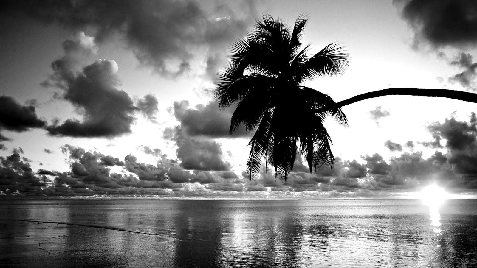 Black and white beach beautiful black and white sunset wallpaper