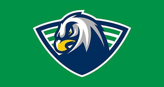 Eagles Revision Art Logo Logo Design Logos