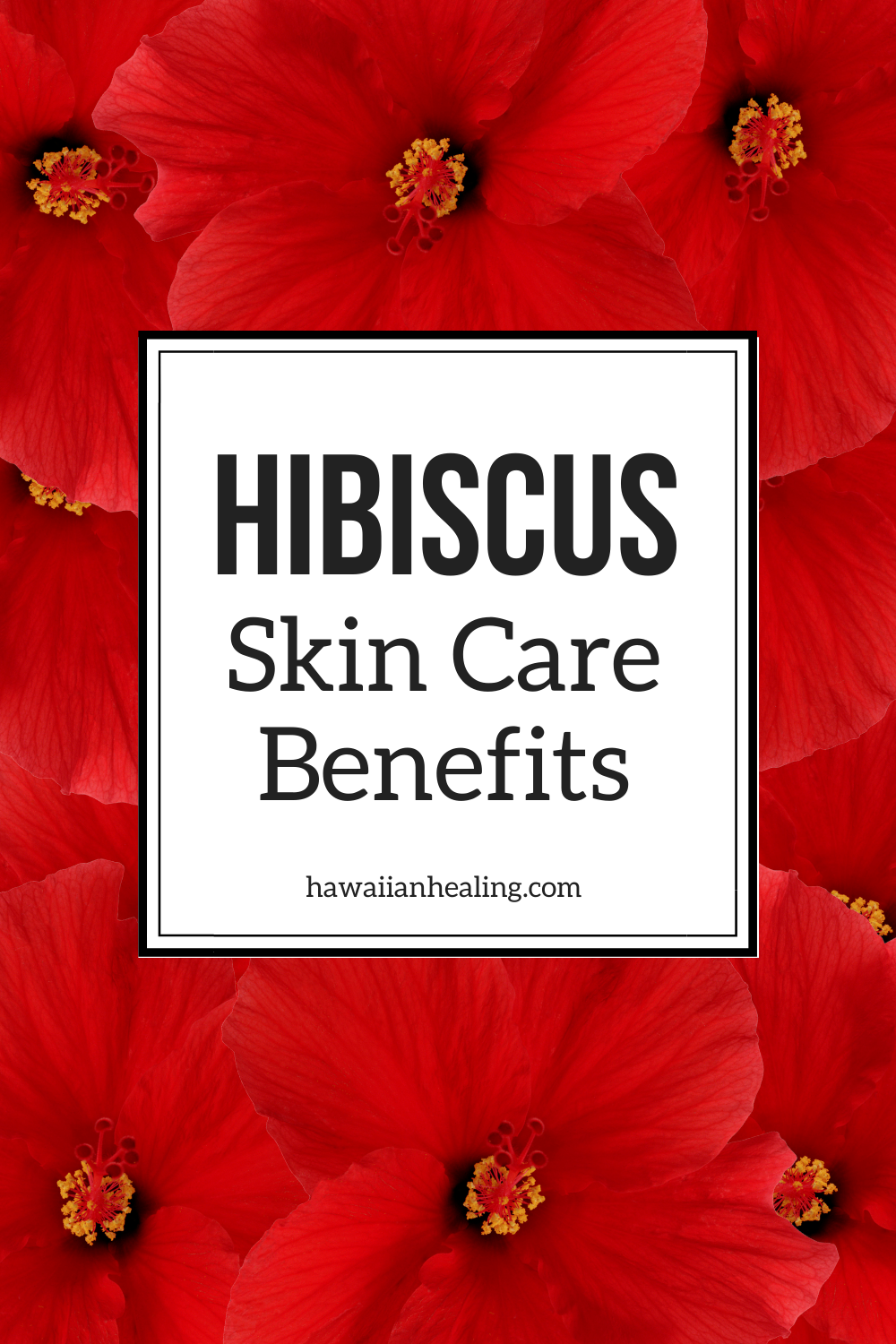 Meet Our Ingredients Organic Hibiscus Flower Extract In 2020 Natural Skin Care Routine Skin Care Benefits Skin Care