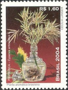 Aromatic plants - Priprioca
