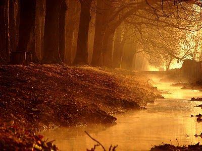 Beautiful, sunset feel