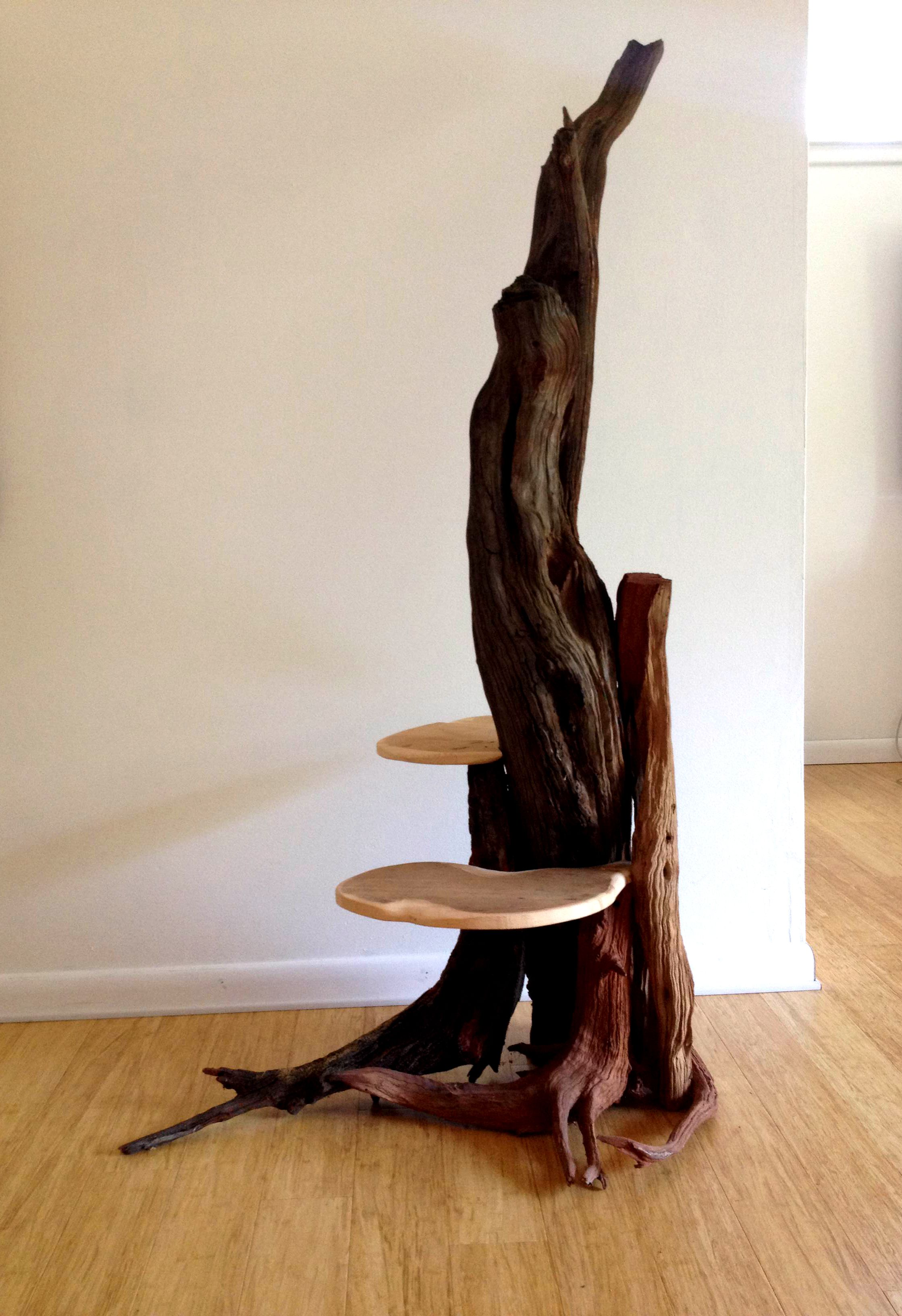 Diy Driftwood Cat Tree Google Search Cat Trees