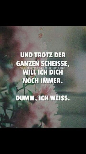 And despite all the shit, I still want you stupid - Sprüche - Quotes