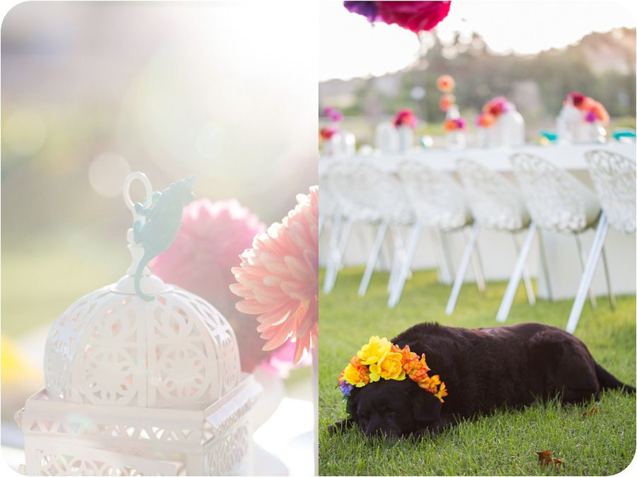 Cutest party ever! So many fun ideas. | Lizelle Lotter Photography » 30th birthday party