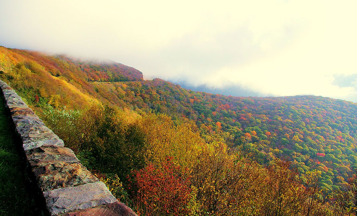 Fall beauty today on the Blue Ridge Parkway at Craggy