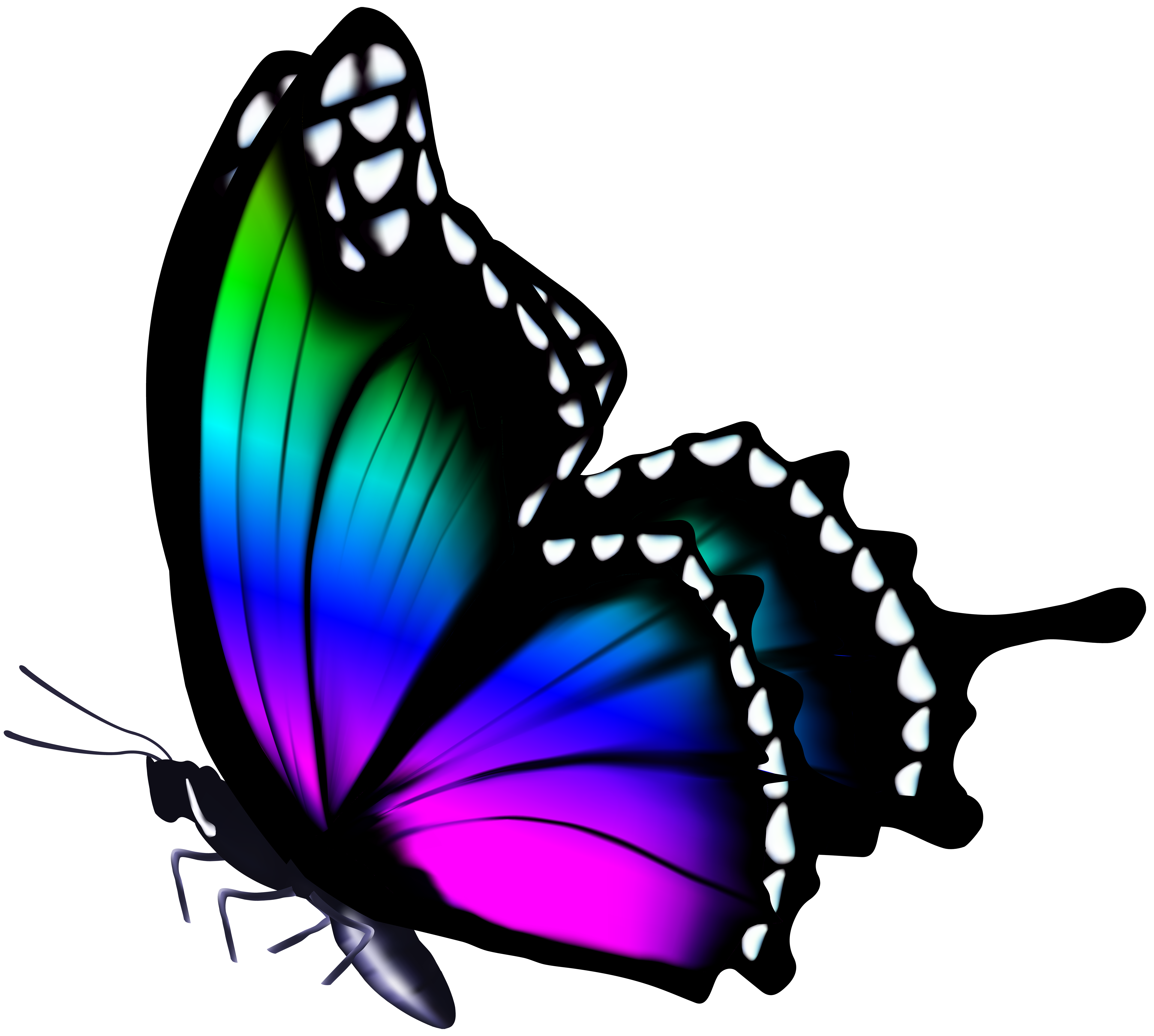Colorful Butterfly Png Clip Art Image Gallery Yopriceville High Quality Images And Transpar Butterfly Art Painting Butterfly Painting Colorful Butterflies