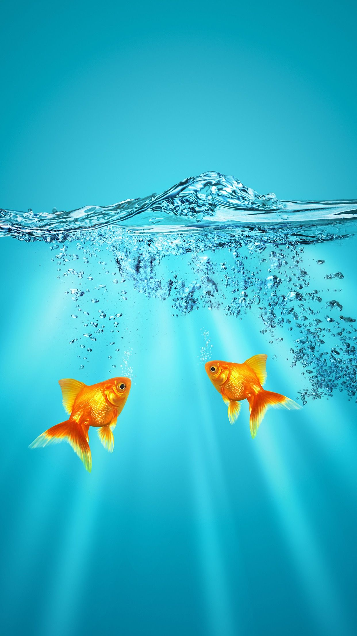 Pin By Tammy Rollins On Wallpaper Goldfish Wallpaper Backgrounds Phone Wallpapers Cool Pictures For Wallpaper