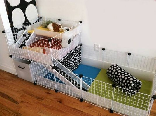 Pin On Hedgehog Cage Ideas Diy