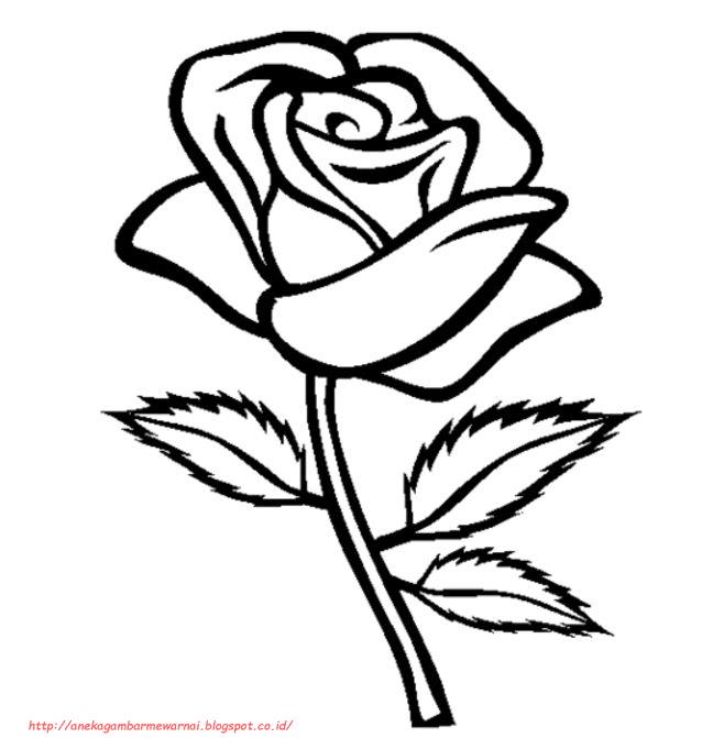 15 Gambar Mewarnai Bunga Mawar Untuk Anak Paud Dan Tk Art Di 2019